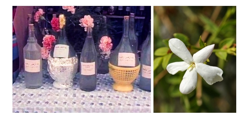Floral waters / hydrolats in Tunisia: distillation and virtues